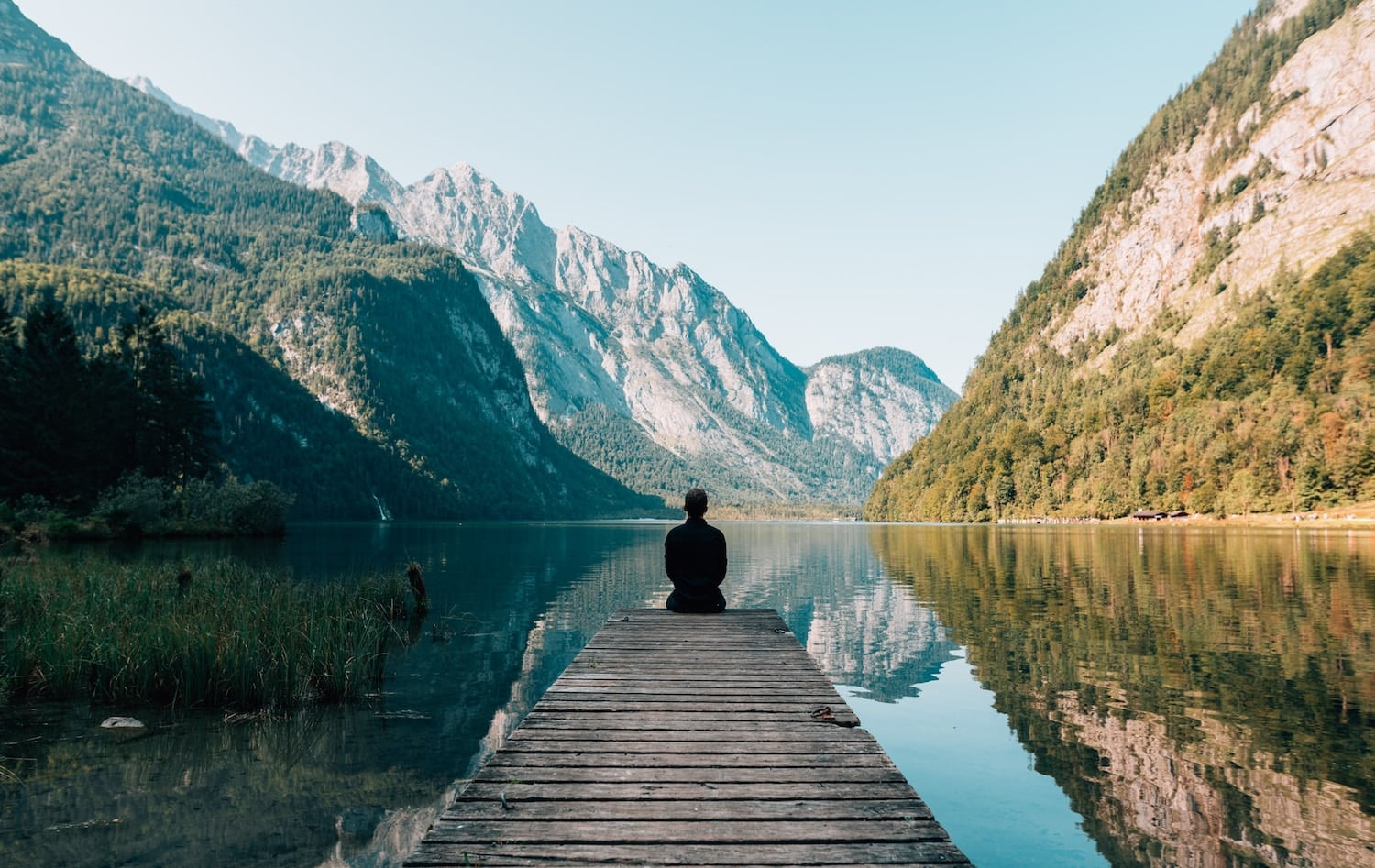 wellness trends in 2019 to watch